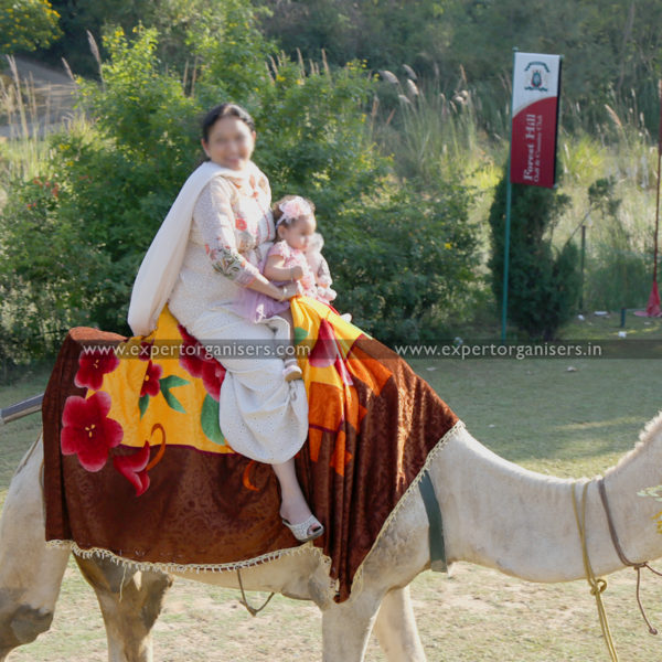 Camel Ride for Birthday and other Parties in Panchkula